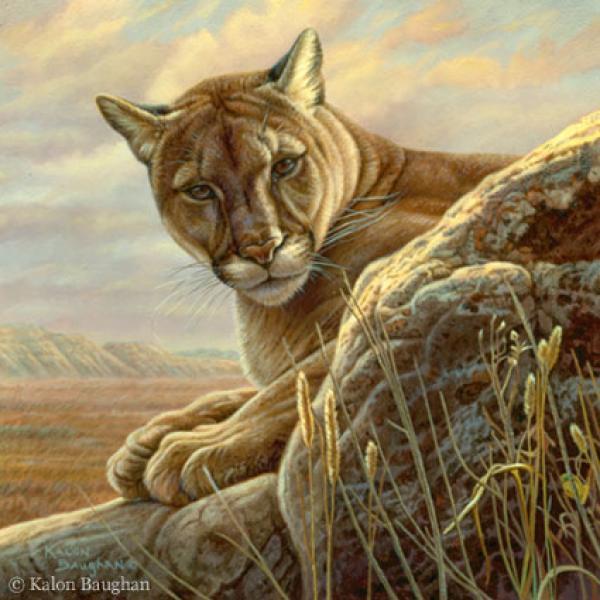 Quot Serengeti Lioness Quot Originals All Artwork Kalon